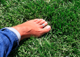 A Woman's Barefoot On Grass - 10 Simple Ways To Feel Calm And Grounded - Sandra Harewood Counselling
